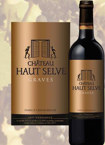 Château Haut Selve 2016 Graves Rouge