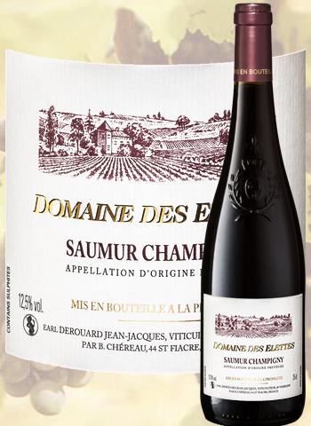 Domaine des Elettes 2017 Saumur-Champigny Derouard
